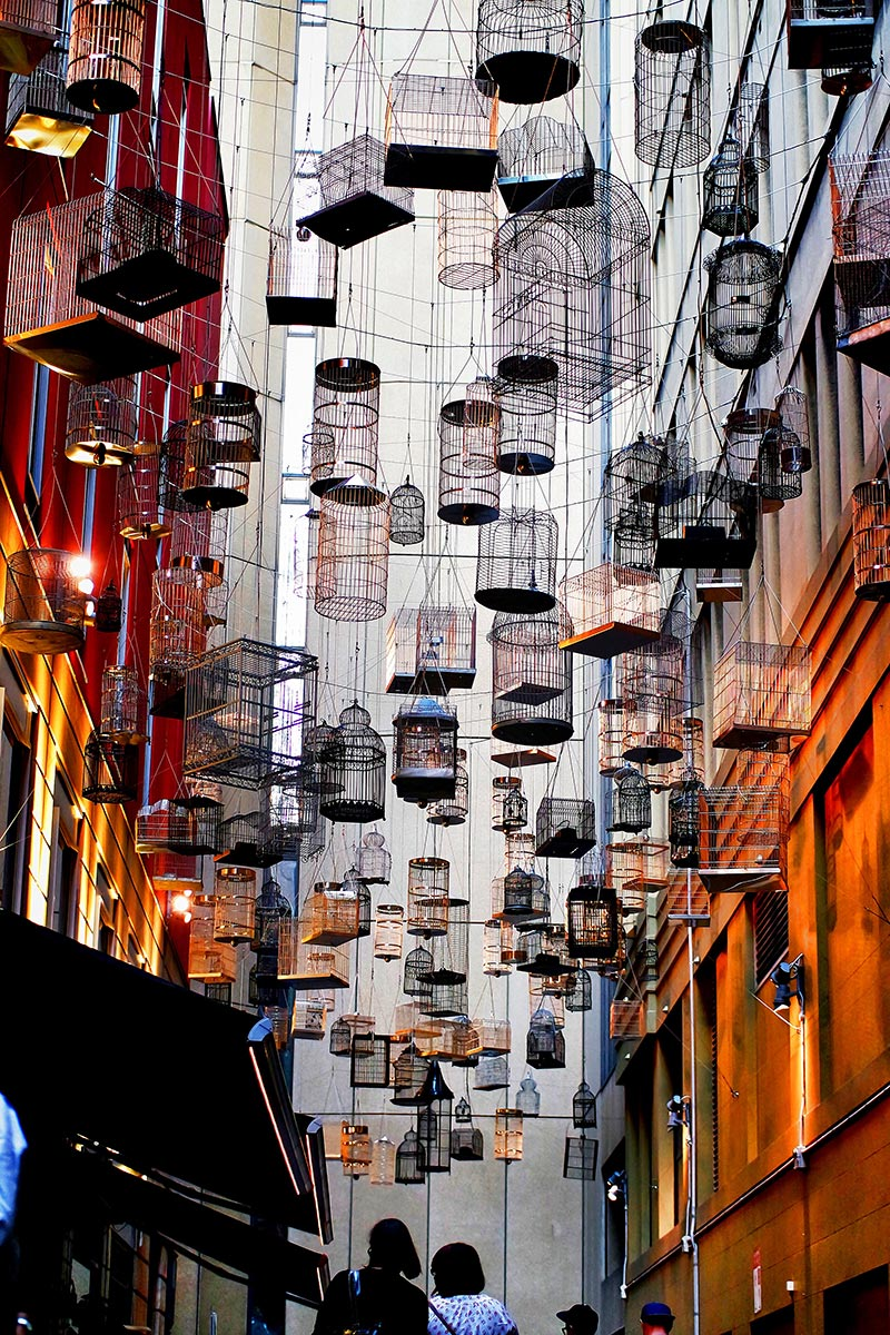 Birdcages suspended between buildings in Sydney's Angel Place