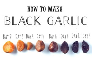 How to make Black Garlic at home!