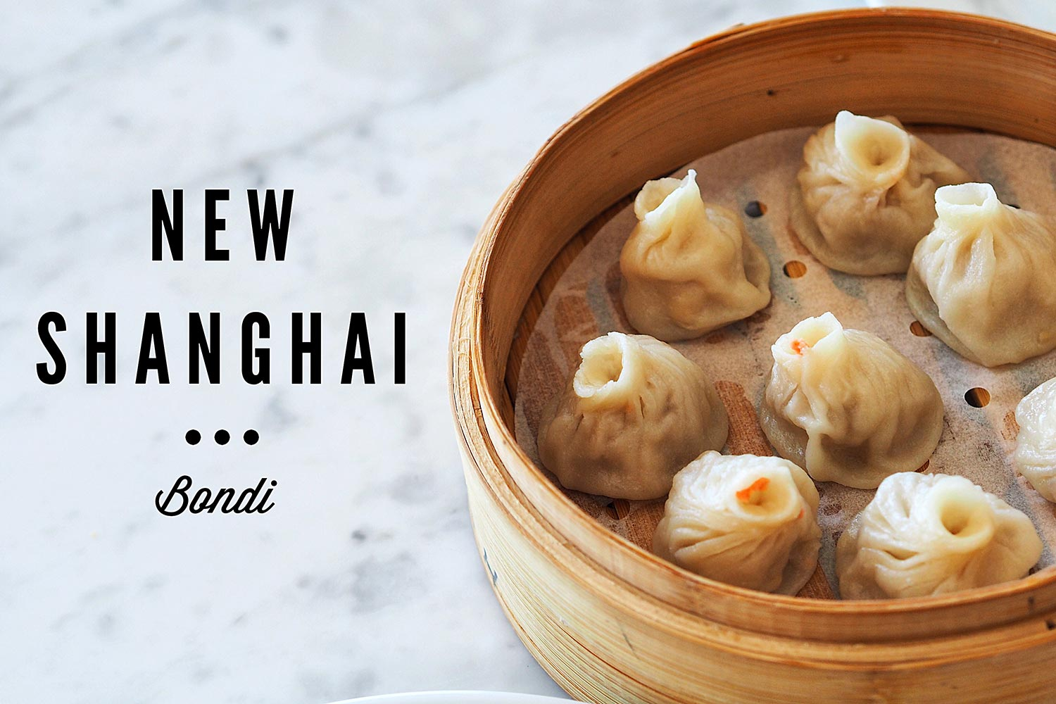 Sydney Food Blog Review of New Shanghai, Bondi