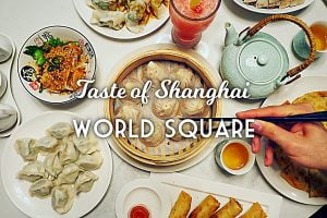 Sydney Food Blog Review of Taste of Shanghai, World Square